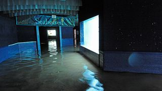 _Julie Larsen Maher 0996 Hurricane Sandy AQ 11 1 12 jpg